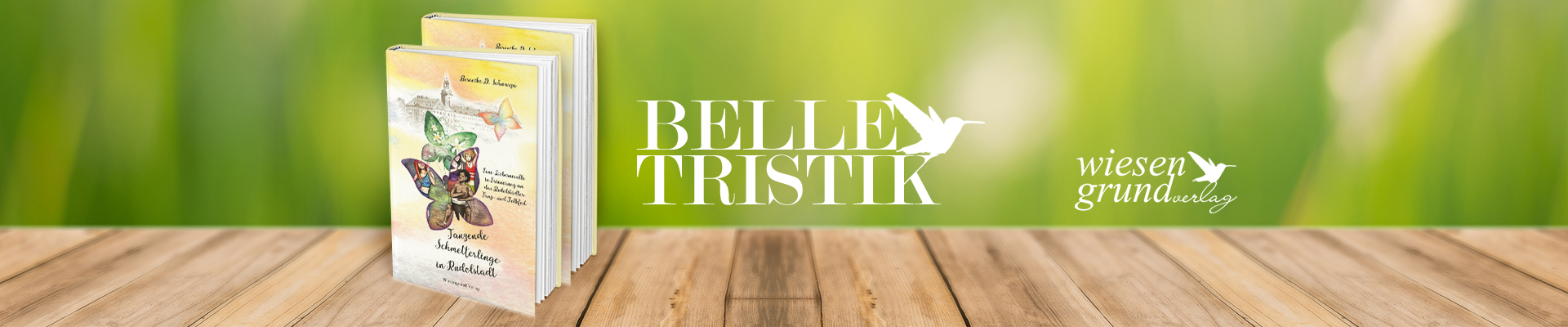 header-Belletristik-TanzendeSchmetterlinge